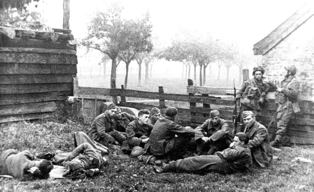 The Nevel: Poles take up positions around Driel